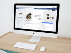 System Stream - Facebook
