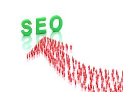 SEO Website Audit & Report